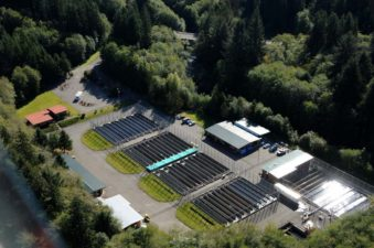 Culverts Case | Quinault Indian Nation