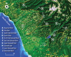 Quinault GIS Mapping Program | Quinault Forestry Department