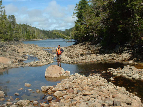 Elroy White (Xanius) with intertida fishtraps.  Credit: Ecostrust Canada.
