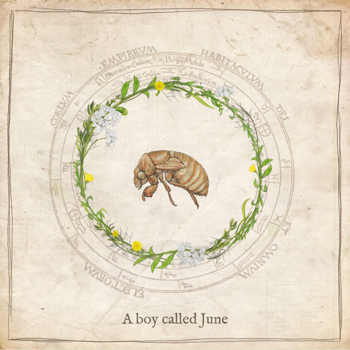 adjy a boy called june