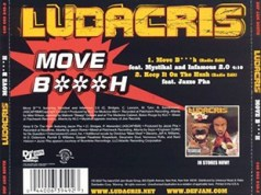 Ludacris Move Bitch