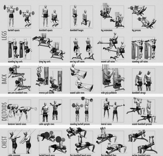 Weight Training Charts Printable