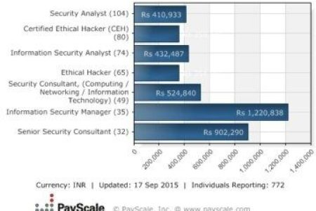 Free Professional Resume » security certification salary ...