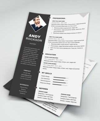 Do you know any professional  sophisticated resume templates for MS     Classic Free Resume Template   Download