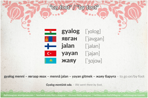 Do Modern Hungarian Turkish And Mongolian Languages Have Any