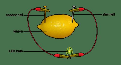 Led Light Bulb Lemon Battery