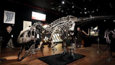 صورة علماء: عظام الديناصورات وجدت على القمر قبل 66 مليون عام