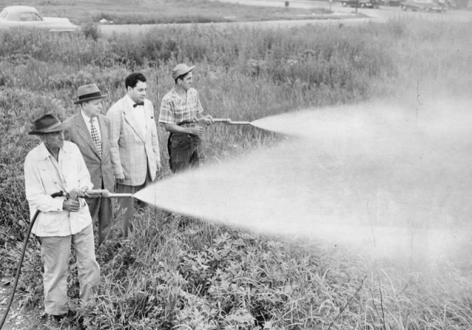 An end to the continued domestic usage of DDT was decreed on June 14, 1972. | Photo Courtesy: Public Domain