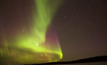 The Living North: From Lapland to Abisko
