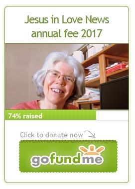 Widget newsletter donate