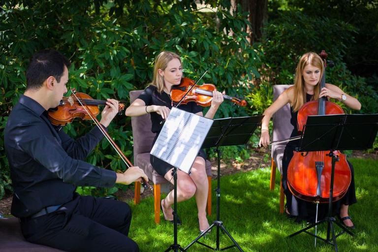 string trio hire