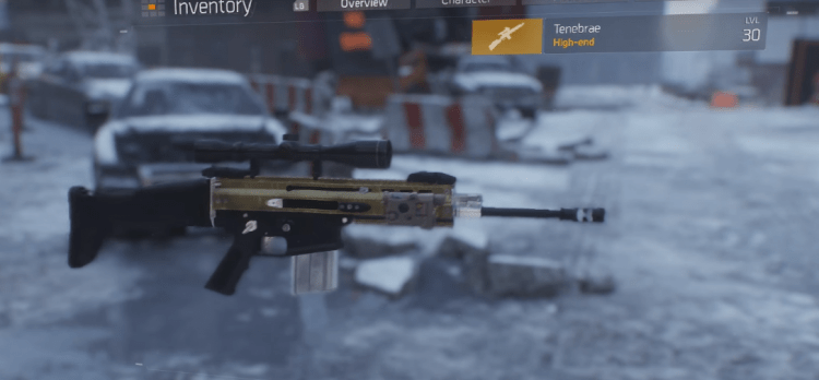 Top 10 Best Marksman Rifles In The Division QTopTens