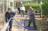 كلية الطب البيطري / جامعة القادسية تقوم بحملة تنظيف لمرافق الكلية