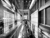 Galleria Lines