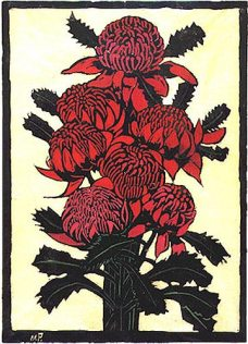 The Waratah - Margaret Preston