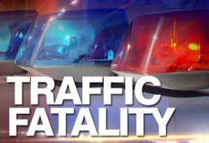 traffic_fatality