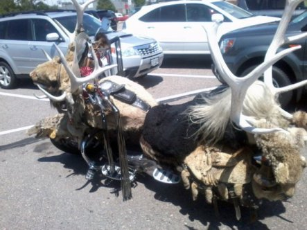 5c07f5612ba8a77f272f9ab270e8fd88-taxidermy-motorcycle
