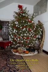 Christmas at Bellmont Plantation_120819_9291