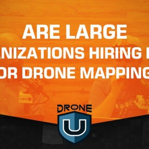 Are Large Organizations Hiring DSP's for Drone Mapping?