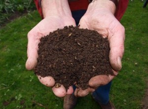 FREE Compost Clinic @ Lu's Place in Bold Point