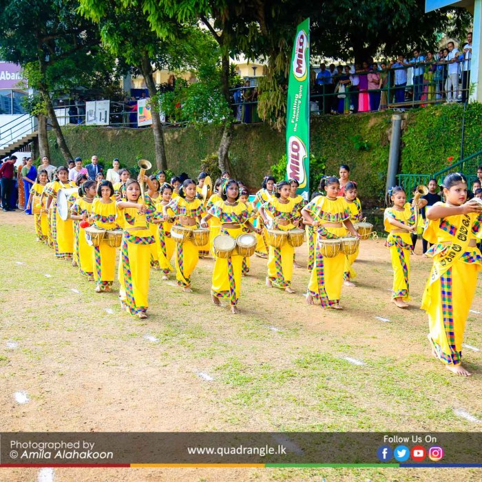 HCK_PRIMARY_SPORTSMEET_2019_OPENNING (110)