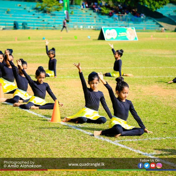 HCK_PRIMARY_SPORTSMEET_2019_OPENNING (162)