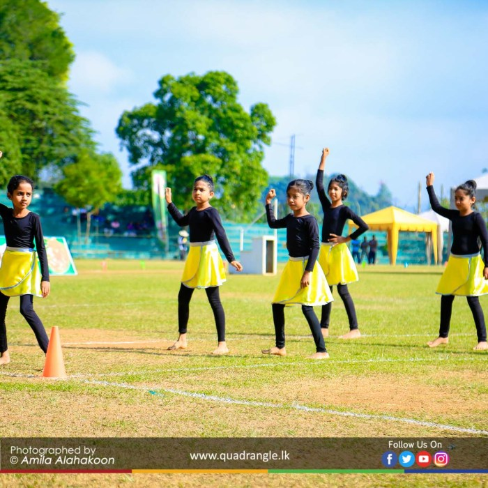 HCK_PRIMARY_SPORTSMEET_2019_OPENNING (169)