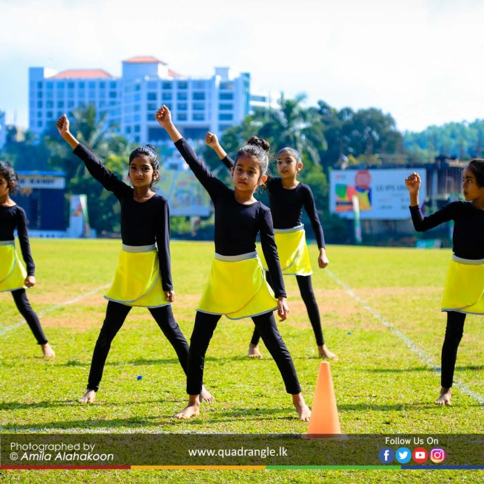 HCK_PRIMARY_SPORTSMEET_2019_OPENNING (173)