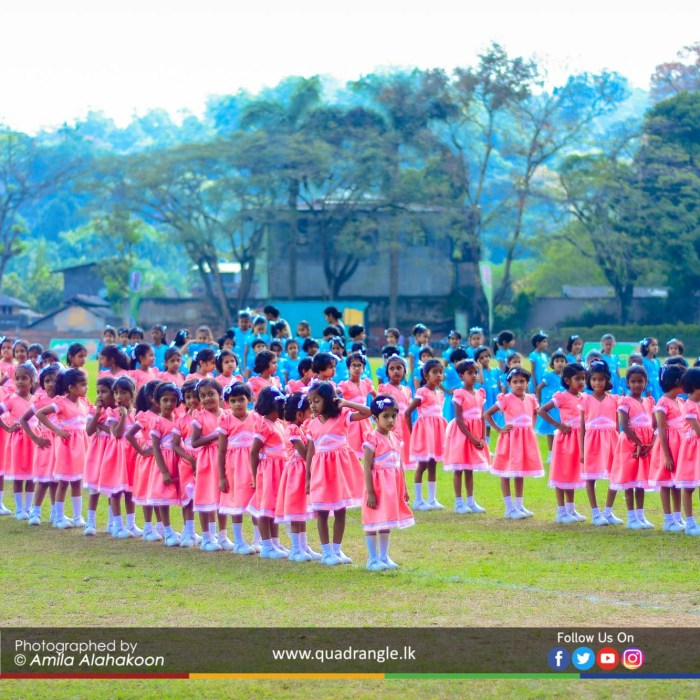 HCK_PRIMARY_SPORTSMEET_2019_DRILLDISPAY (1)