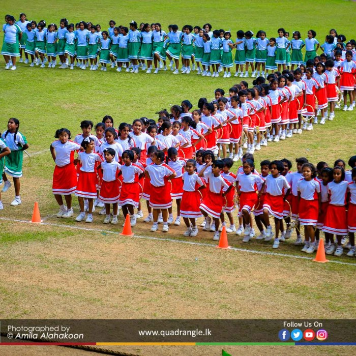 HCK_PRIMARY_SPORTSMEET_2019_DRILLDISPAY (100)