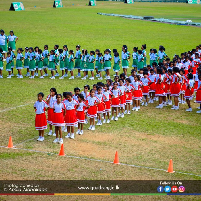 HCK_PRIMARY_SPORTSMEET_2019_DRILLDISPAY (109)