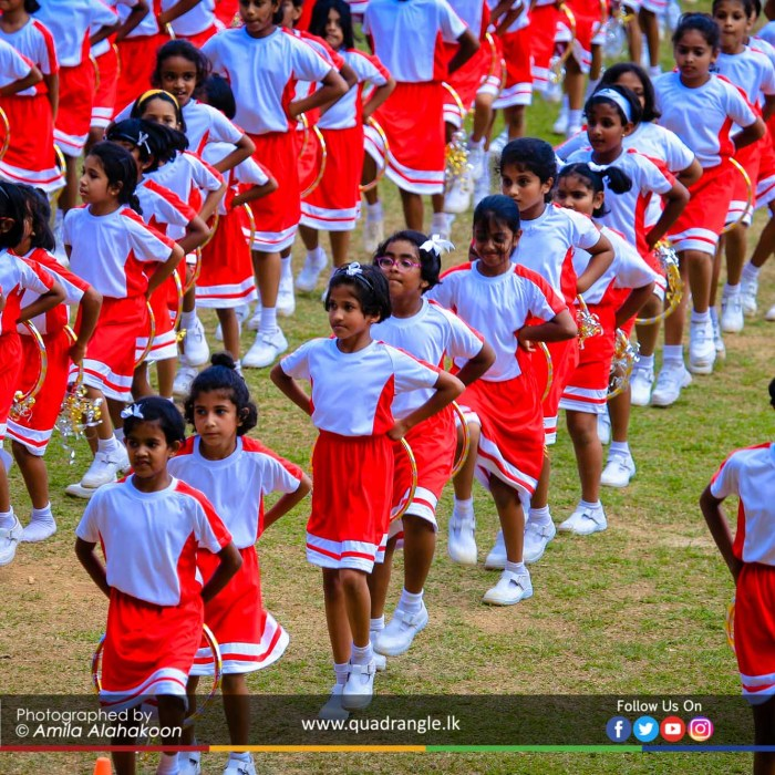 HCK_PRIMARY_SPORTSMEET_2019_DRILLDISPAY (115)