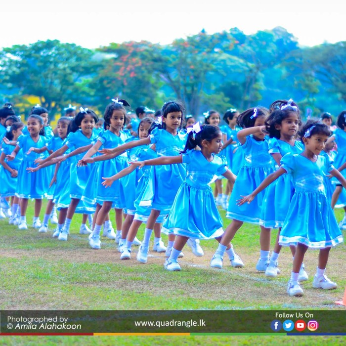 HCK_PRIMARY_SPORTSMEET_2019_DRILLDISPAY (12)