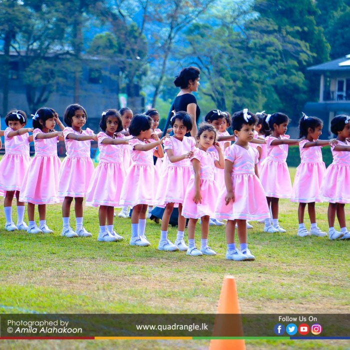 HCK_PRIMARY_SPORTSMEET_2019_DRILLDISPAY (123)
