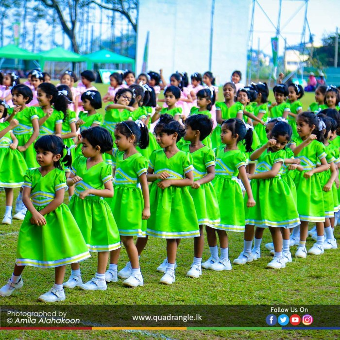 HCK_PRIMARY_SPORTSMEET_2019_DRILLDISPAY (138)