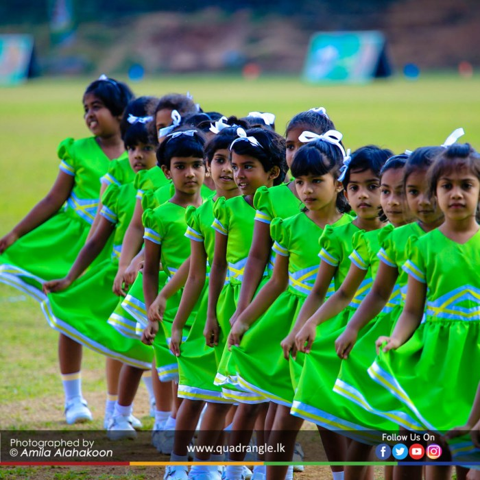 HCK_PRIMARY_SPORTSMEET_2019_DRILLDISPAY (150)