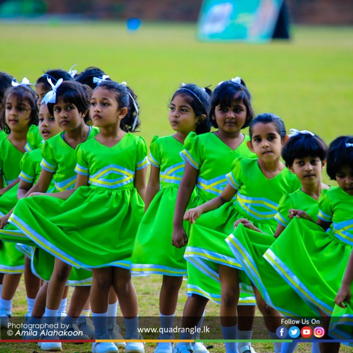 HCK_PRIMARY_SPORTSMEET_2019_DRILLDISPAY (151)