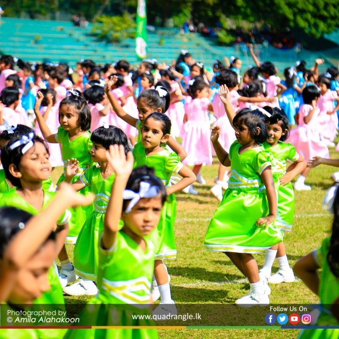 HCK_PRIMARY_SPORTSMEET_2019_DRILLDISPAY (176)