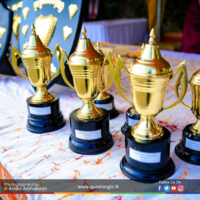 HCK_PRIMARY_SPORTSMEET_2019_DRILLDISPAY (180)
