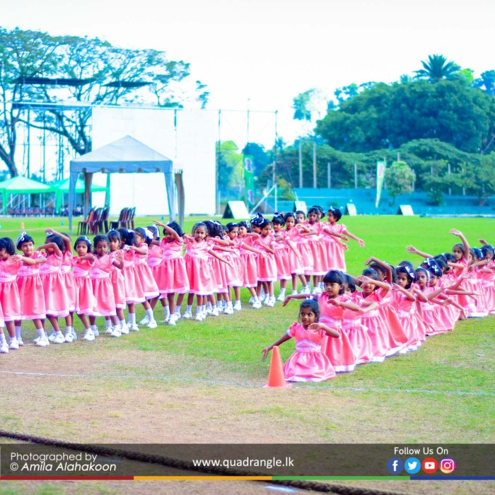 HCK_PRIMARY_SPORTSMEET_2019_DRILLDISPAY (19)