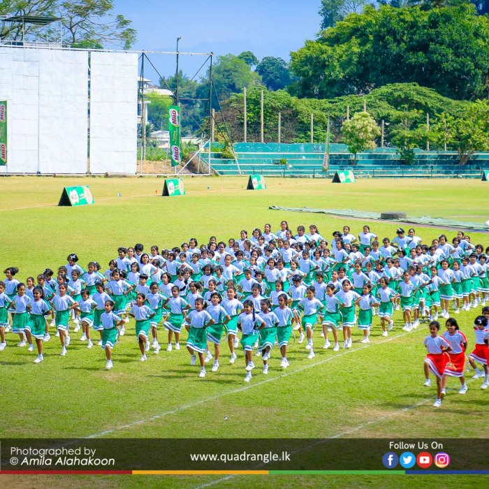 HCK_PRIMARY_SPORTSMEET_2019_DRILLDISPAY (192)