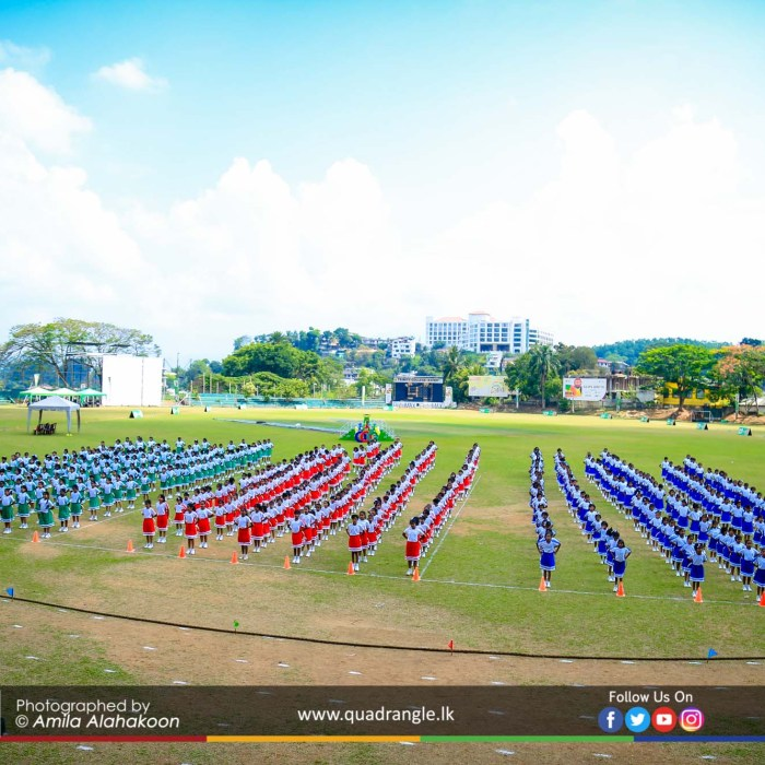 HCK_PRIMARY_SPORTSMEET_2019_DRILLDISPAY (195)