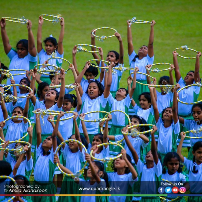 HCK_PRIMARY_SPORTSMEET_2019_DRILLDISPAY (201)