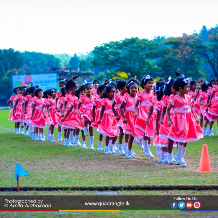 HCK_PRIMARY_SPORTSMEET_2019_DRILLDISPAY (21)