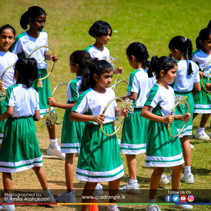 HCK_PRIMARY_SPORTSMEET_2019_DRILLDISPAY (224)