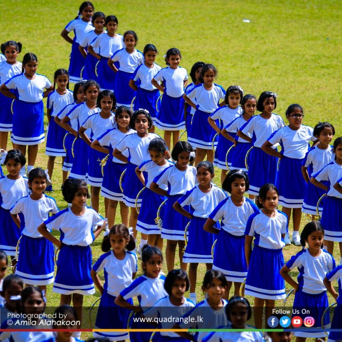 HCK_PRIMARY_SPORTSMEET_2019_DRILLDISPAY (228)