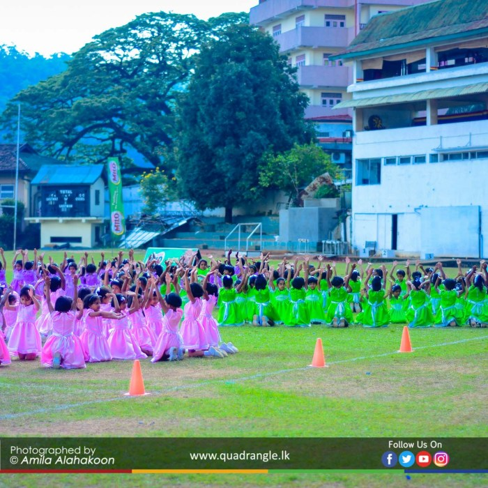 HCK_PRIMARY_SPORTSMEET_2019_DRILLDISPAY (23)