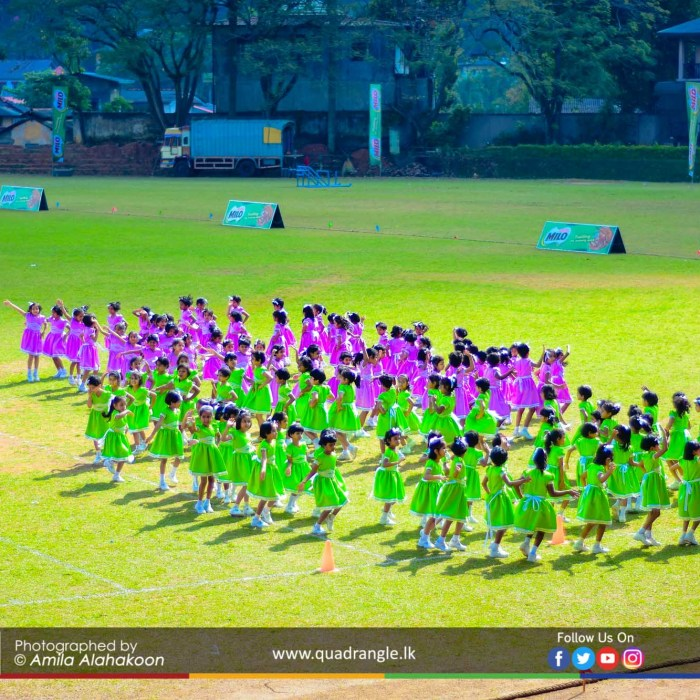 HCK_PRIMARY_SPORTSMEET_2019_DRILLDISPAY (27)