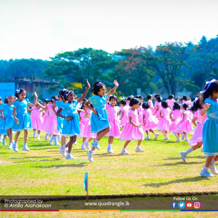 HCK_PRIMARY_SPORTSMEET_2019_DRILLDISPAY (29)