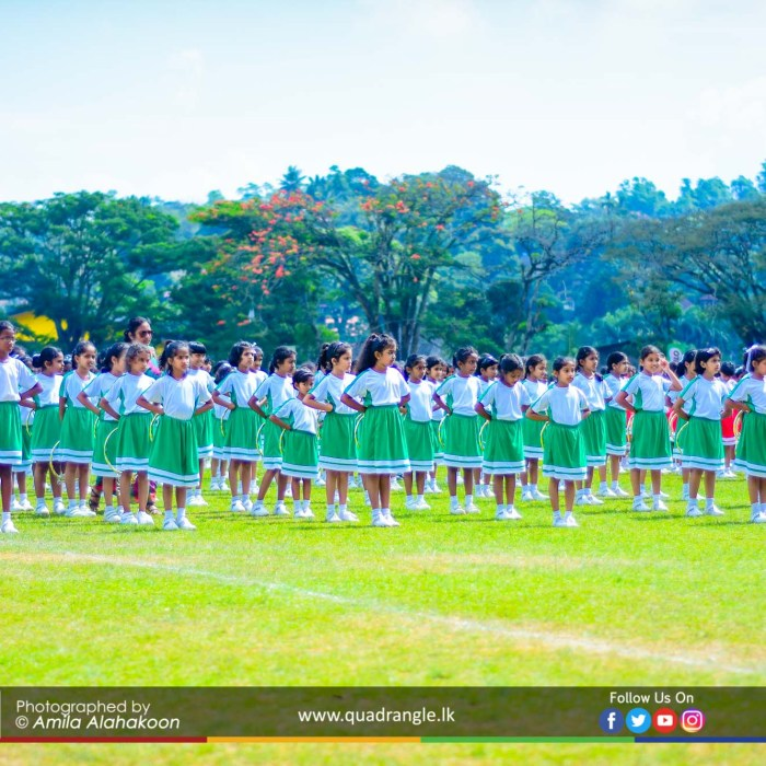 HCK_PRIMARY_SPORTSMEET_2019_DRILLDISPAY (32)